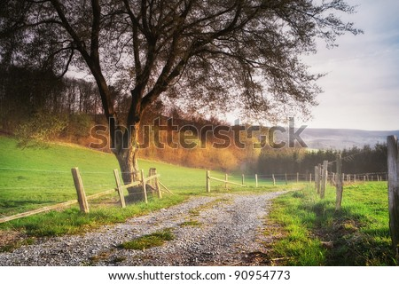 Autumn in the Ardennes - stock photo