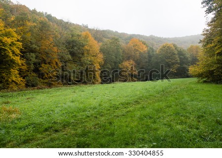 Autumn in the Ardennes, Belgium.