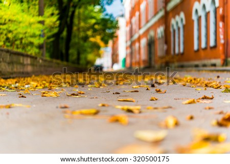 Autumn in the city, alley that runs between houses and a park strewn with fallen leaves. View from the level of asphalt - stock photo