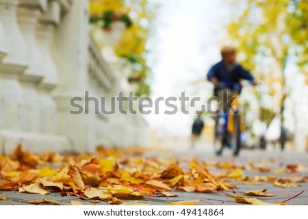Autumn in the city park. - stock photo