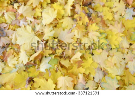 Autumn in the forest.Colorful autumn leaves.Abstract motion blurred trees in a forest. - stock photo