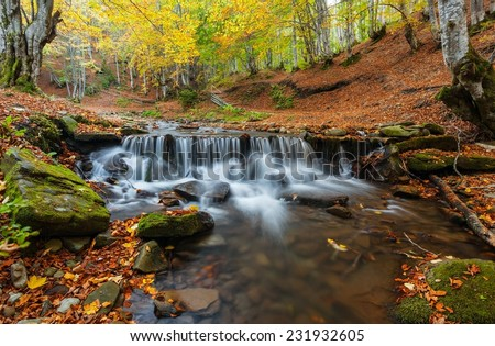 Autumn in the forest mountain stream. Beautiful autumn forest, rocks covered with moss. Mountain river with rapids and waterfalls. Nearby is the tourist route through the village Pylypets.Carpathian. - stock photo