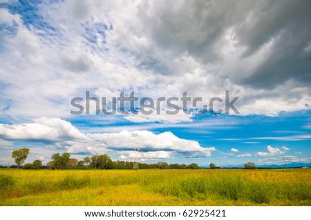 Autumn in the italian plains - stock photo