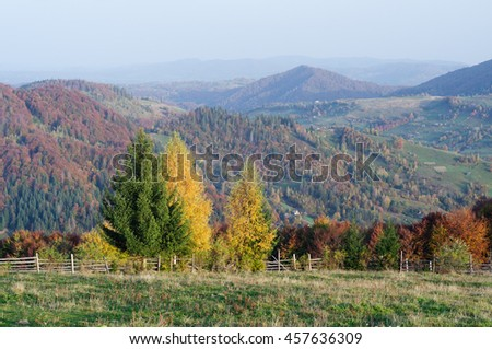Autumn in the mountain village. Landscape on a sunny day. View from the top of the hill. Carpathians, Ukraine, Europe