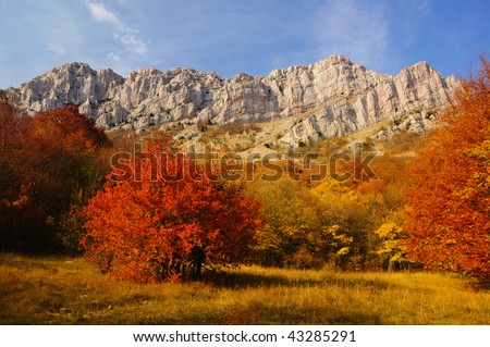 Autumn in the Mountains - stock photo