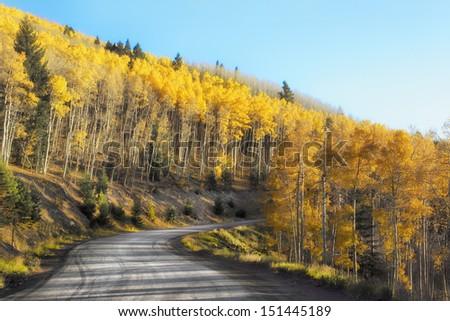 Autumn in the Sangria Mountain, New Mexico - stock photo