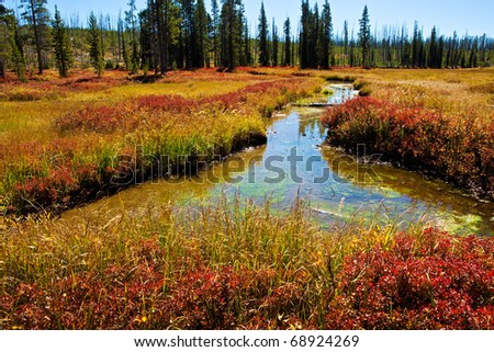 Autumn in the wetland meadows of the Lewis River valley, Yellowstone NP - stock photo