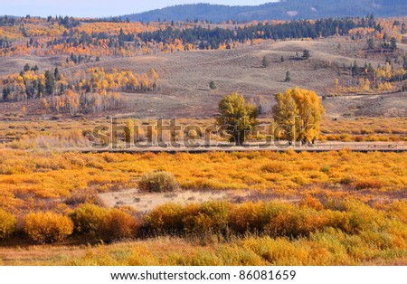 Autumn in Wyoming