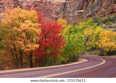 Autumn in Zion National Park--Colorful fall foliage and winding road - stock photo