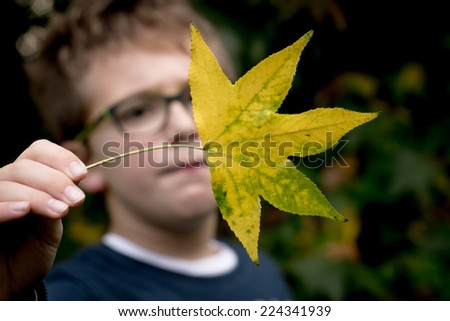 Autumn is coming  - stock photo