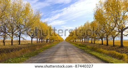 Autumn is coming to an end, and winter is peeking around the corner. Shot taken in mid October. - stock photo
