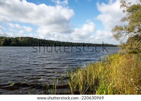 Autumn lake with reflections of trees and clouds - stock photo