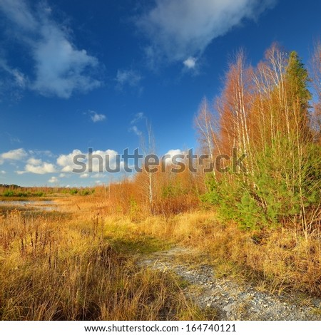 Autumn landscape against blue sky - stock photo