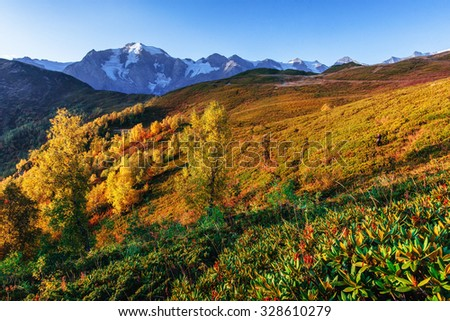 Autumn landscape and snowy mountain peaks. View of the mountain with Mount Ushba Mheyer, Georgia. Europe.