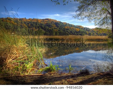 Autumn landscape at forest pond