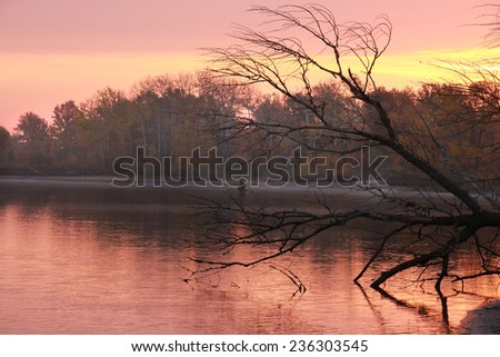 autumn landscape beautiful pink sunset on the river and trees, clouds reflected in water