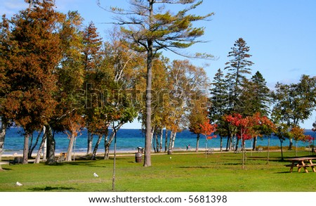 Autumn landscape Colorful trees in a park - stock photo