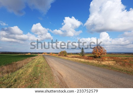 autumn landscape desert road to the horizon in the field and beautiful white clouds in sunny afternoon