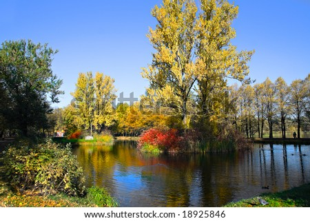 Autumn landscape in park
