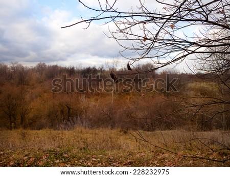 Autumn landscape in park Kolomenskoe. Moscow, Russia - stock photo