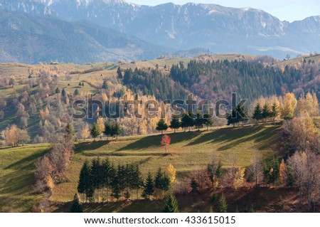 Autumn landscape in the transylvanian hills