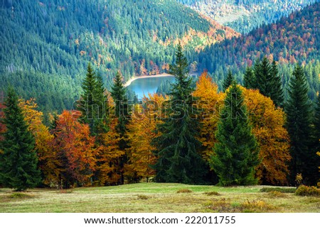 Autumn landscape in the western Ukrainian Carpathians - stock photo