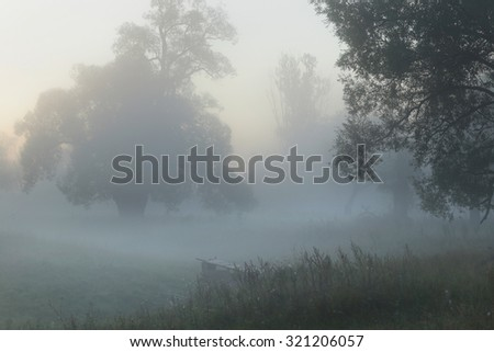 autumn landscape misty morning on the riverbank in the oak grove
