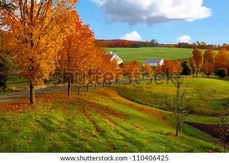 Autumn landscape of green rolling hills covered with bright colorful orange and red trees and leaves along a country road. Blue sky with puffy white clouds. - stock photo