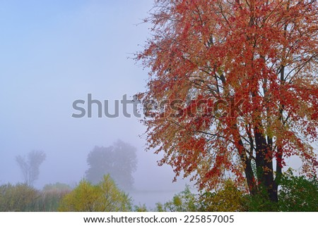Autumn landscape of Jackson Hole Lake in fog, Fort Custer State Park, Michigan  - stock photo