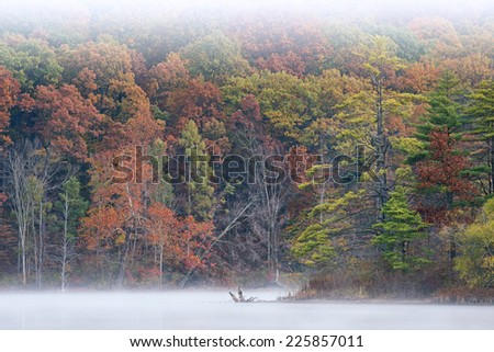 Autumn landscape of the shoreline of Hall Lake in fog, Yankee Springs State Park, Michigan, USA - stock photo