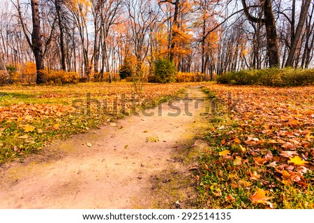 Autumn Landscape. Park in Autumn. Forest in Autumn, Collection of Beautiful Colorful Autumn Leaves: green, yellow, orange, red - stock photo