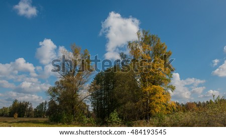 autumn landscape trees meadow and clouds sunny day