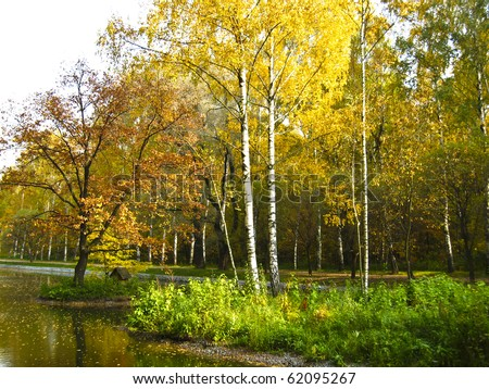 Autumn landscape - two little islands with red and yellow trees, forest around. Recorded in Sokolniki park in Moscow.