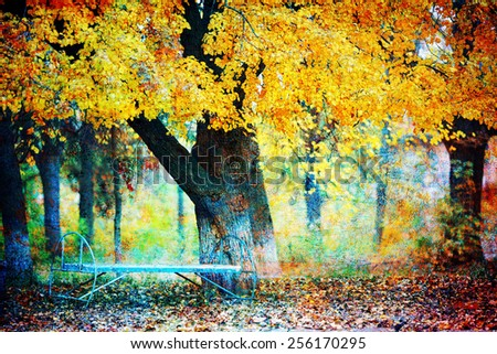 autumn landscape with a tree with yellow leaves and old bench beside him - stock photo
