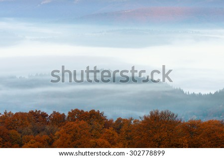 Autumn landscape with fog in the mountains. Beech forest with orange leaves - stock photo