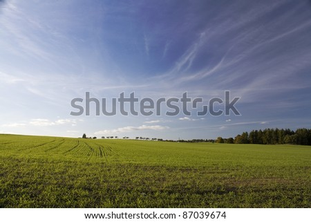 Autumn landscape with green fields and blue sky
