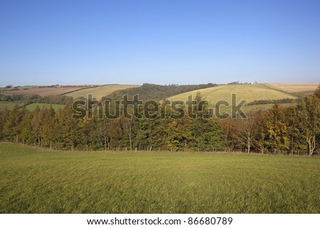 autumn landscape with green fields and colorful autumn trees under a clear blue sky - stock photo