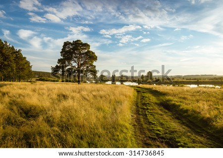 Autumn landscape with lush pine tree on the bank of the river and country roads - stock photo