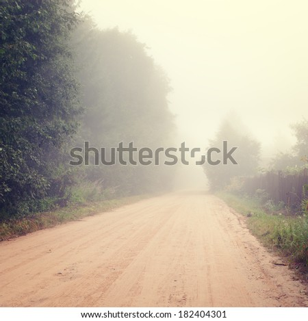 Autumn Landscape with Road in Fog. Solitude and Tranquility Concept in Nature. Toned Photo. Copy Space. - stock photo