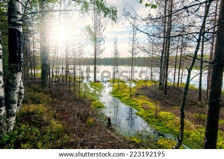 Autumn landscape with Salmon lake in Karelia, Russia - stock photo
