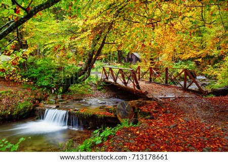 Autumn landscape with stream in forest and wooden bridge