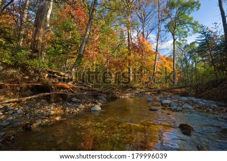 Autumn landscape with taiga river.