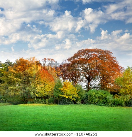 Autumn landscape with trees and lawn in the foreground. The autumn forest.