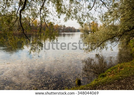 Autumn landscape with trees near the water