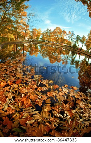 Autumn landscape. Yellow leaves in the lake. - stock photo