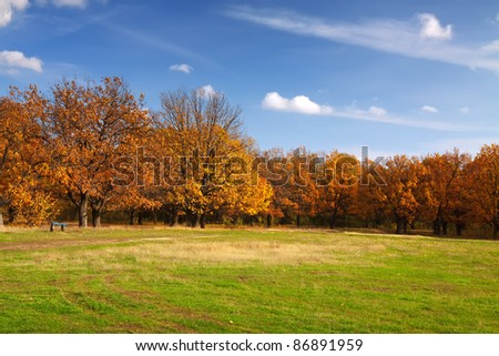 Autumn lanscape with oak grove and green meadow - stock photo
