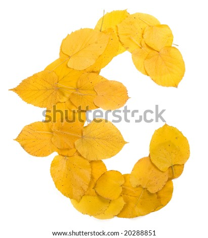 Autumn leaf EURO symbol - stock photo