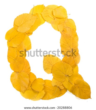 Autumn leaf letter Q - stock photo