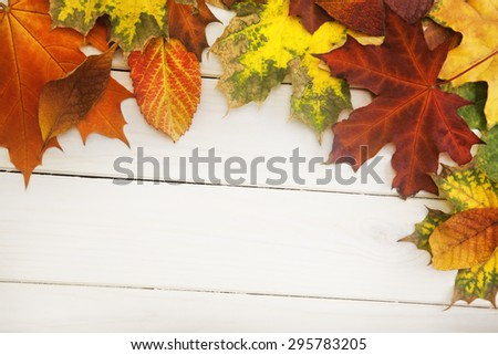autumn leaf on wood background - stock photo