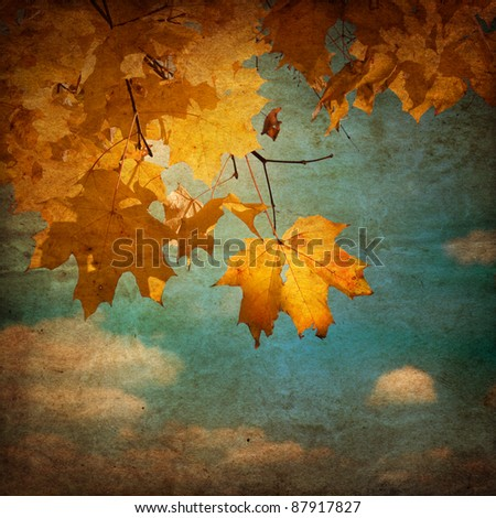 autumn leafs on an old paper - stock photo